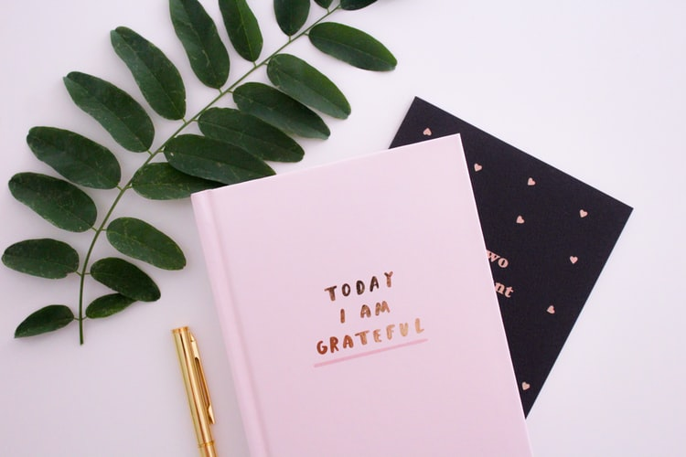 gratitude journal feelings book